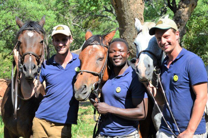 Hessel, Howard en Dilo met paarden
