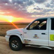 Afrikaanse zonsondergang op safari